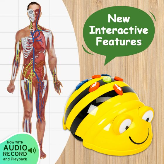 Bundle Bee-Bot Floor Robot and Human Body Mat